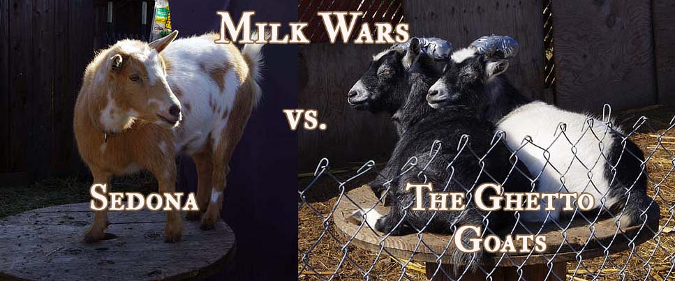 milk wars copy